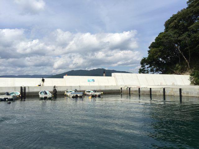 砂小浜漁港 - 海の釣り場情報