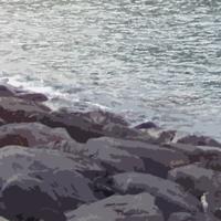 大船川河口海岸